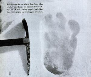 Eric_Shipton_yeti_footprint